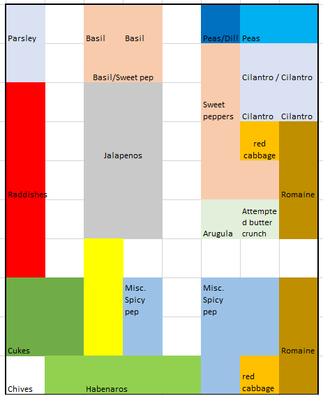 A screen shot of an excel sheet which displays the final layout of the 2020 garden plot in colours.