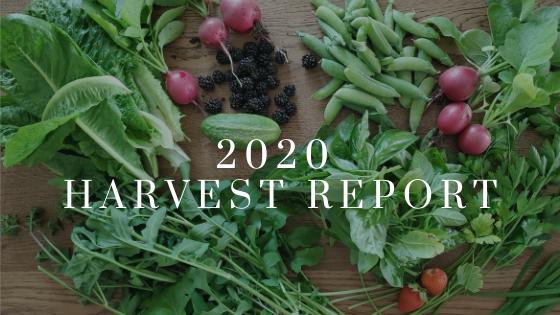 banner - 2020 harvest report