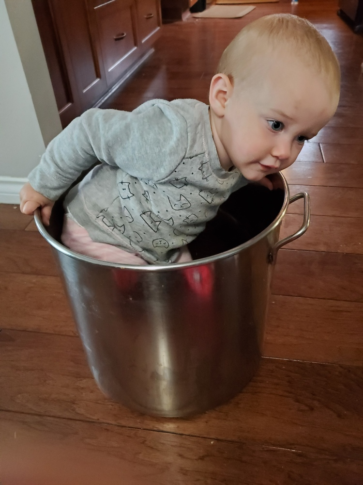 Cecilia, about 15 months old, standing/crouching inside a giant silver spaghetti sauce pot