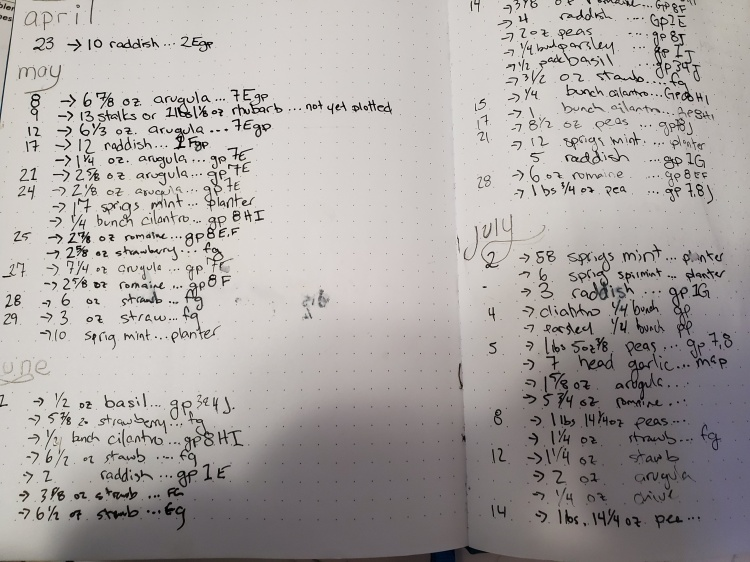 A shot of the first page of my harvest data in my garden journal